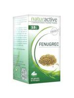 Naturactive Gelule Fenugrec, Bt 30 à TOURNAN-EN-BRIE