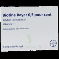 Biotine Bayer 0,5 Pour Cent, Solution Injectable I.m. à TOURNAN-EN-BRIE