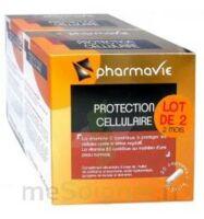 Bconcept Nutri Complex Protection Cellulaire Lot 2 Boîtes 30 Capsules à TOURNAN-EN-BRIE