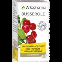 Arkogelules Busserole Gélules Fl/45 à TOURNAN-EN-BRIE