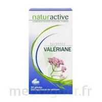 Elusanes Valeriane 200 Mg, Gélule Pilul/30 à TOURNAN-EN-BRIE