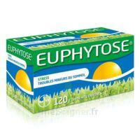 Euphytose Comprimés Enrobés B/120 à TOURNAN-EN-BRIE