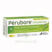 Perubore Caps Inhalation Par Vapeur Inhalation Plq/15 à TOURNAN-EN-BRIE