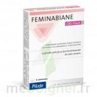 Feminabiane Cbu Flash Comprimés à TOURNAN-EN-BRIE