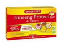 Superdiet Ginseng Gelée Royale Protect Bio Solution Buvable 20 Ampoules/15ml à TOURNAN-EN-BRIE