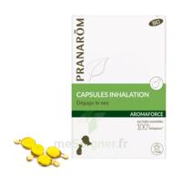 Aromaforce Caps Inhalation Bio B/15 à TOURNAN-EN-BRIE