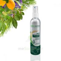Naturactive Assaini'spray 200ml à TOURNAN-EN-BRIE