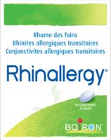 Boiron Rhinallergy Comprimés B/40 à TOURNAN-EN-BRIE