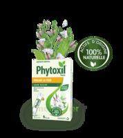 Phytoxil Toux Sans Sucre Sirop Adulte Enfant +6 Ans 12 Sachets/10ml à TOURNAN-EN-BRIE