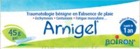 Boiron Arnigel Gel T/45g à TOURNAN-EN-BRIE