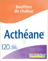 Boiron Acthéane Comprimés B/120 à TOURNAN-EN-BRIE